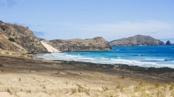 Roadtrip in Northland, New Zealand